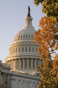 Auch in der US-Hauptstadt lässt sich der Fall Foliage erleben (Foto: Destination DC)