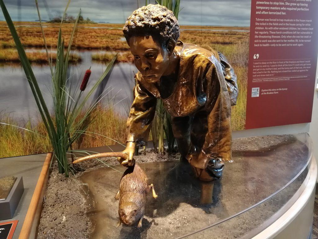 Eine Bronzestatue stellt dar, wie Harriet Tubman im flachen Wasser eine Bisamratte fängt